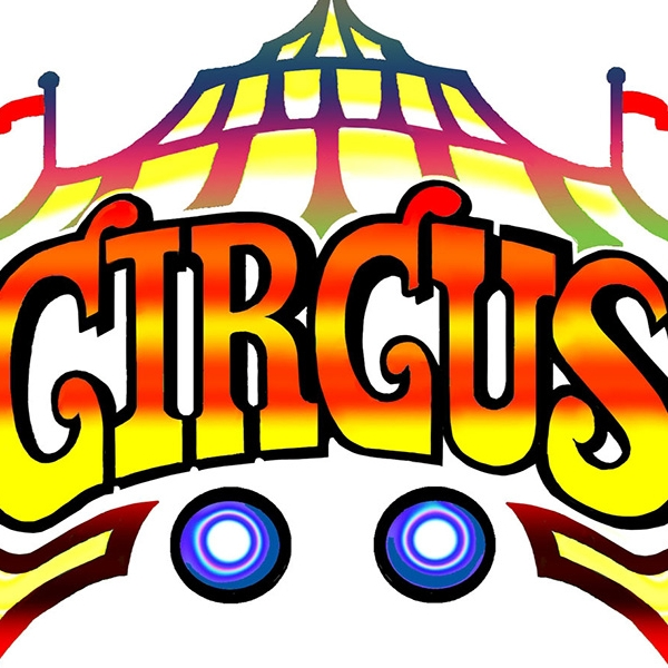 Big top Circus Workshop & Magic Show
